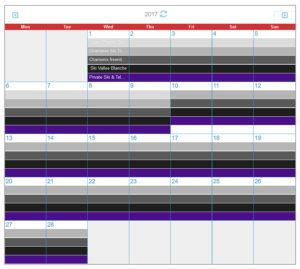 Patagoniatiptop calendar