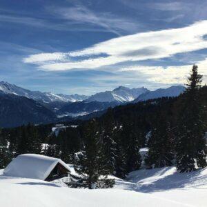 winter wonderland on our great alps ski safari