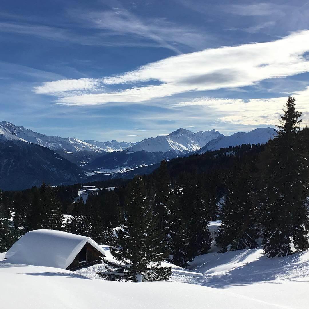 Winterwunderland auf unserer großartigen Alpinskisafari