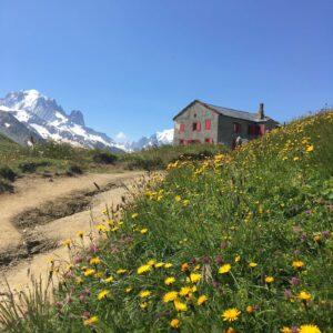 chamonix-day-hiking-aiguilette-des-posettes