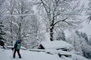 snowshoe-hiking-chamonix