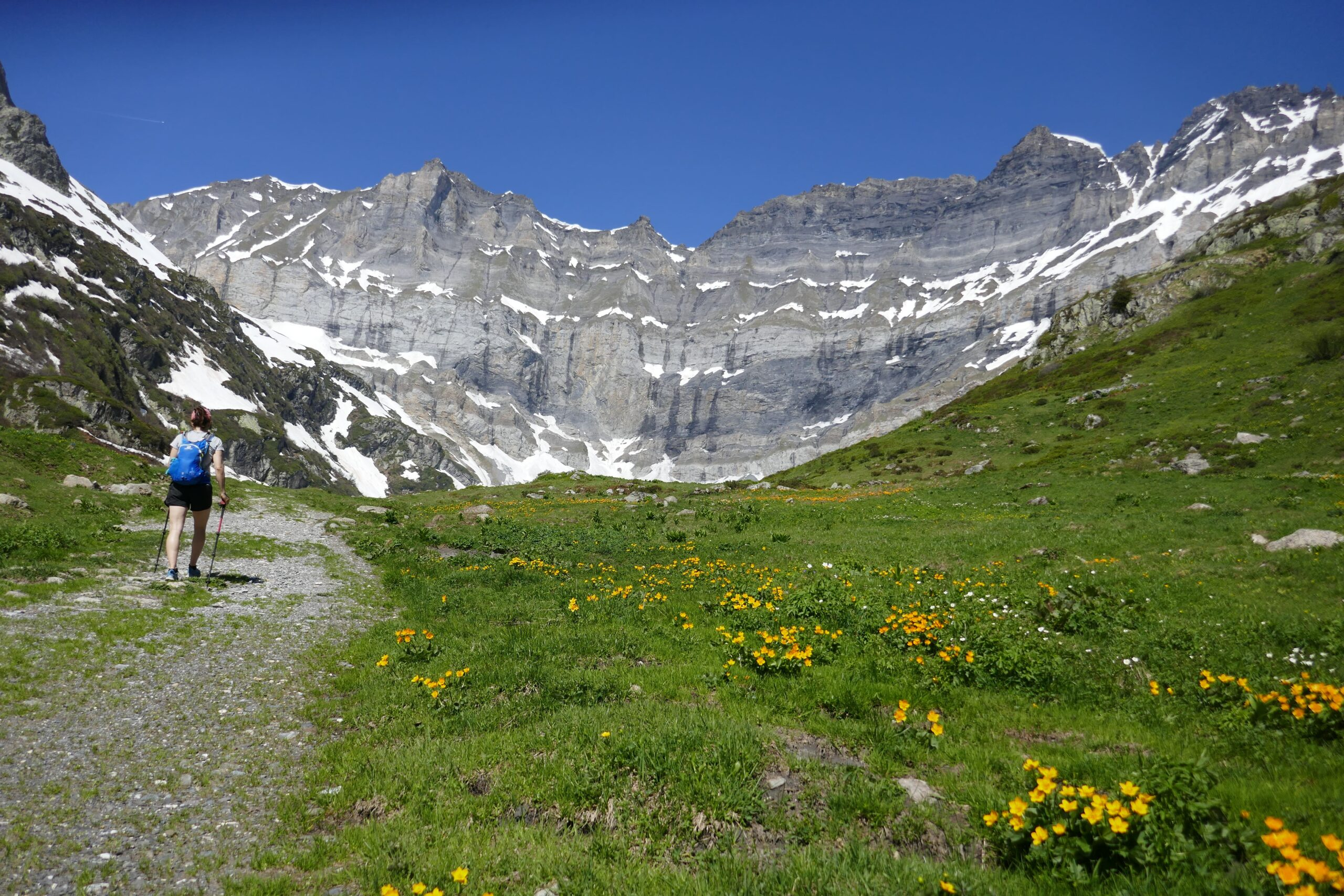 Hiking-Tour-of-the-Trient-valley